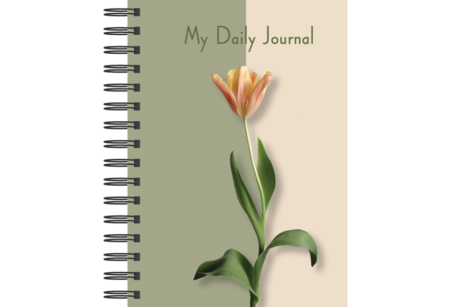 how to make a daily journal
