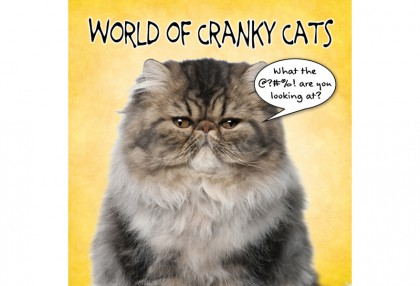 World of Cranky Cats
