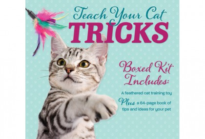 Teach Your Cat Tricks Box Kit